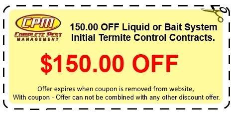 coupon2013
